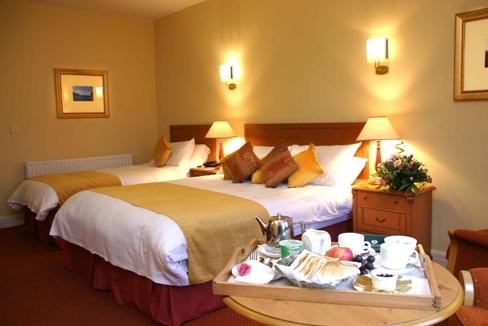 Mill Park Hotel Guestroom
