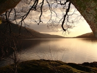 Celtic Tours: Whisky Tour of Scotland: Loch Lomond