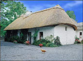 Visit Rathbaun Farms in Ireland with Celtic Tours