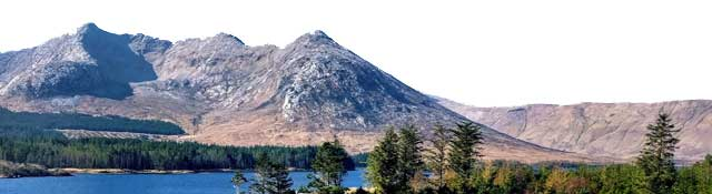Ireland Your Way it's cheap and you can use: SD25SSIT to take off $25 pp � it's 5 nights from $374 per person after discount applied                 | Celtic Tours World Vacations